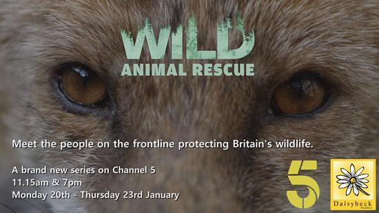 Wild Animal Rescue - Channel 5
